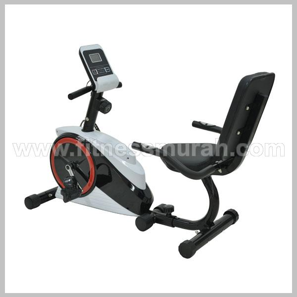 ID 438 - RECUMBENT BIKE